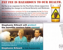 dempartyillinois2012mailer-sk_d_6b