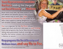 dempartyillinois2012mailer-sk_d_7b