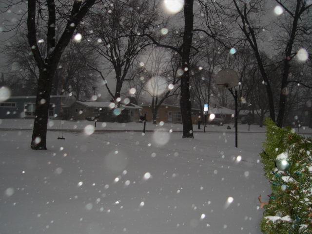 Snowpocalypse 2011, pre-blizzard